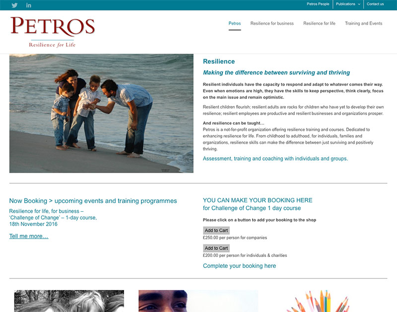Petros - website design by The Big Ideas Collective